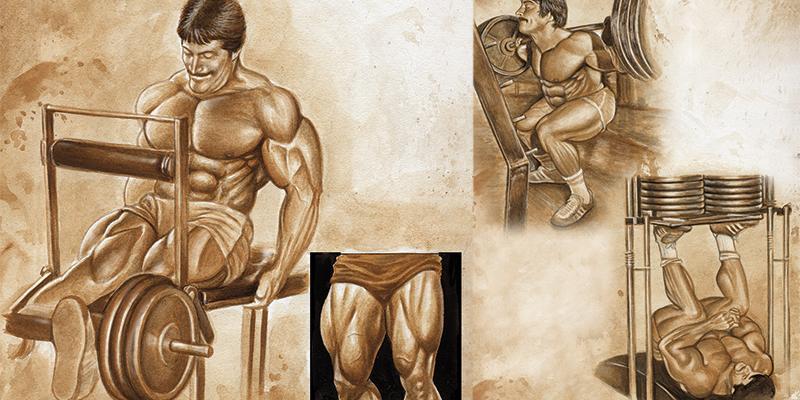 ANTRENAMENT TRADIȚIONAL - Construirea masei musculare