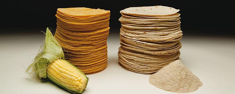 Tortilla de porumb vs. tortilla din făină